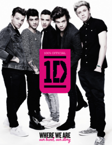 1D: Where We Are book