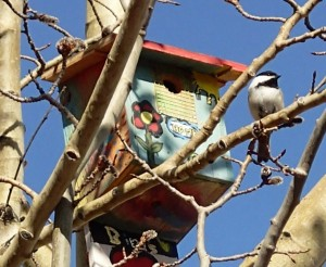 Birdhouse with chickadees