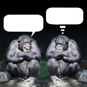 Chimpanzees talking
