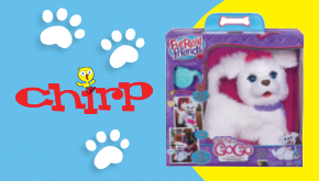 Chirp November 2014 Dog Contest