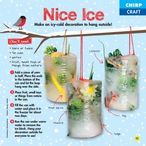 Chirp Magazine Icy Craft