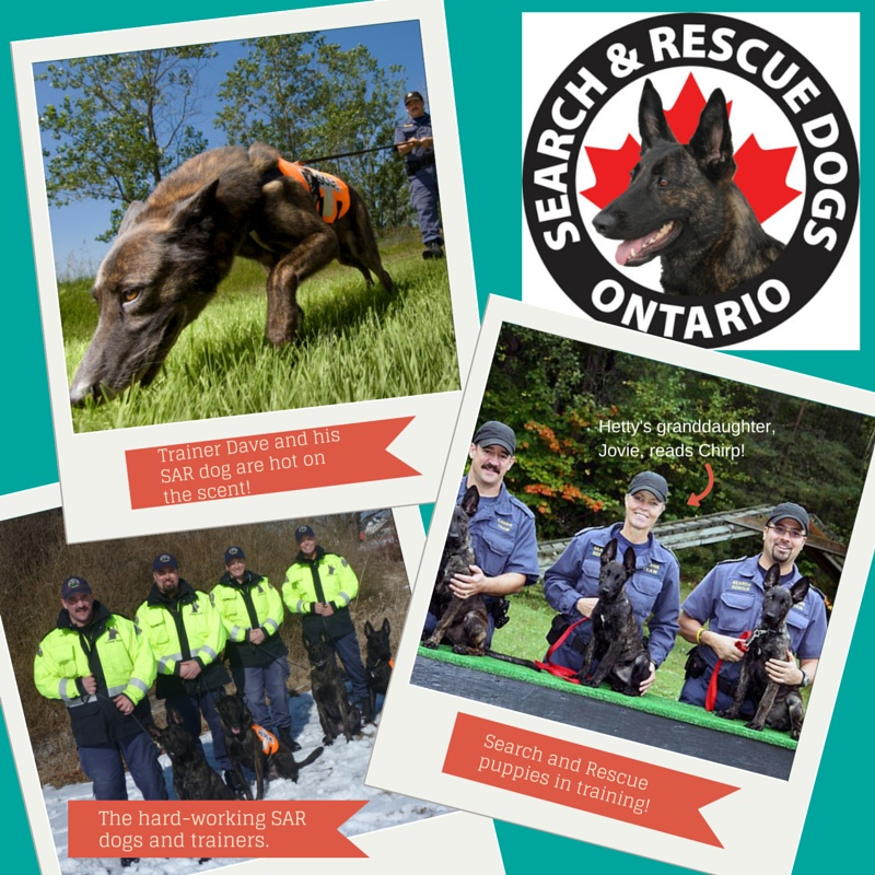 Search and REscue Dogs ontario Chirp MAgazine Heroes