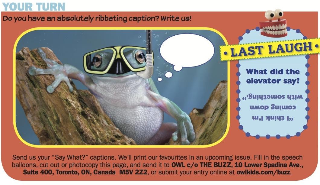 Owlkids | OWL Magazine: Say What - Owlkids