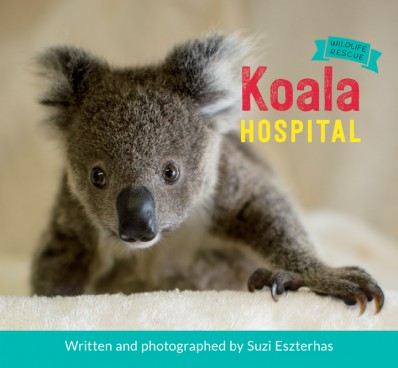 WildlifeRescue_KoalaHospital_cover