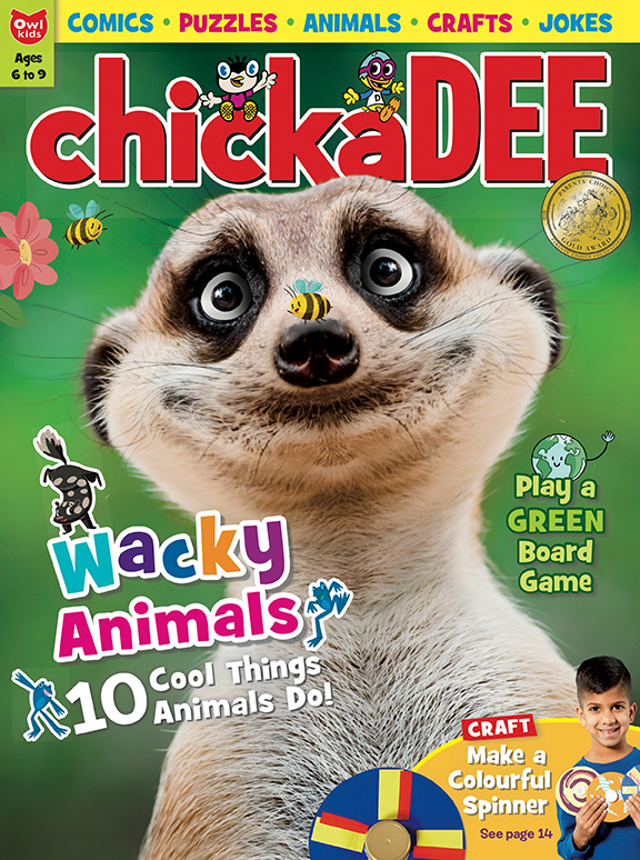 chickaDEE magazine april 2018 cover