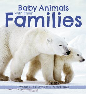 BabyAnimalsWithTheirFamilies_screenRGB