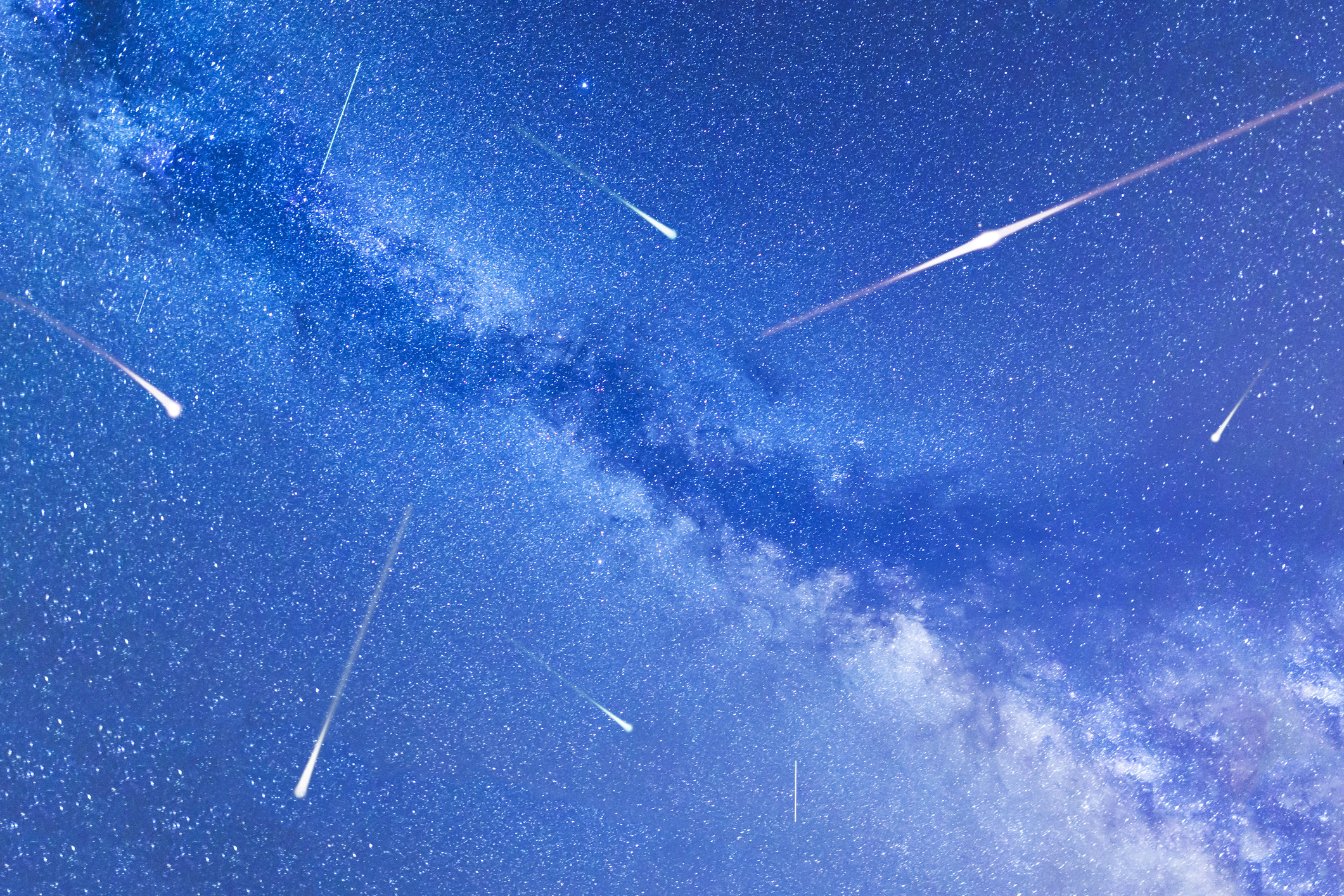 Chickadee blog: Perseid Meteor Shower